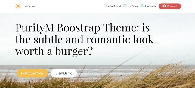 bootsrap-theme